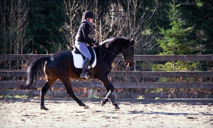Hylee Training - Mission: Two or Four Group Horseback-Riding Lessons or Birthday Party for Up to 15 at Hylee Training (Up to 69% Off)