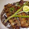 Pakistani Fare at Zaika Barbeque & Grill