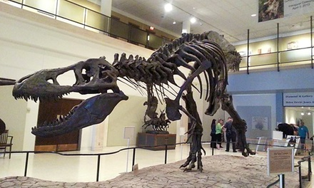 Individual or Family Membership or Kids' Birthday Party at El Campo Museum of Natural History (Up to 56% Off)