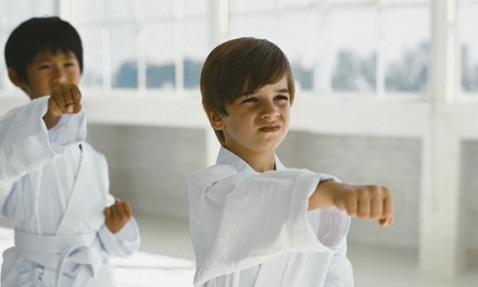 $16 for 10 Martial-Arts Classes at Pro Dojos (Up to $150 Value)