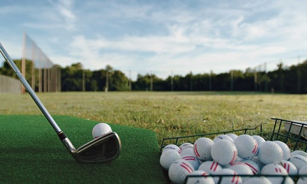 Five or Ten Range-Ball Buckets or Five Buckets and One 30-Minute Lesson at Echo Valley Golf Club (Up to 52% Off)