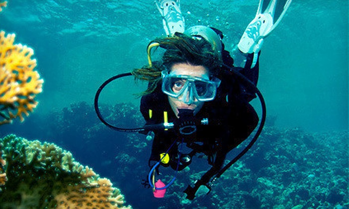 Diver's Den - St. Marys: Discover Scuba Experience for Two or Family Pass for Up to Five at Diver's Den in St. Mary's (Up to 62% Off)