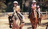 Double M Horsemanship - Jamul: Two-Hour Horseback-Riding Lesson for One or Two at Double M Horsemanship (Half Off)