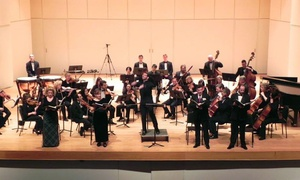 "Young Person's Guide to the Orchestra: Norwalk Symphony Orchestra presents ""Young Person's Guide to the Orchestra"" on Sunday, March 6, at 3 p.m."