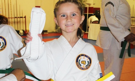 12 or 18 Little Ninja Martial-Arts Classes or 6 Kickboxing Classes at Dragon Fire Martial Arts (Up to 68% Off)
