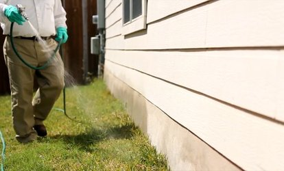 $79 for Interior and Exterior <strong>Pests</strong> Prevention and Elimination from Bulwark Exterminating ($180 Value)