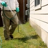 64% Off Residential Pest Control from Bulwark Exterminating