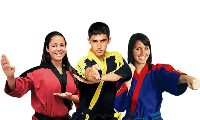TrySelfDefense.com - Multiple Locations: $39 for Six Weeks of Martial Arts Classes and a T-shirt from TrySelfDefense.com ($349 Value)