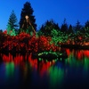 Up to 60% Off Festival of Lights Moonlight Kayak Tour