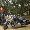 Up to 51% Off Harley-Davidson Rentals and Accessories