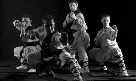 1, 3 o 6 meses de tarifa plana de actividades colectivas orientales desde 19,95 € en Shaolin Temple