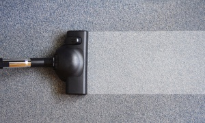 Green Solutions Cleaning: Organic Carpet Cleaning for Three or Five Rooms and Hallway from Green Solutions Cleaning (Up to 64% Off)