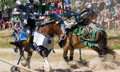 image for Admission to Bay Area Renaissance Festival (Up to 49% Off). Three Options Available.