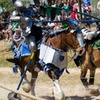 Up to 49% Off Admission to Bay Area Renaissance Festival