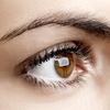 Up to 52% Off Eyebrow Waxing