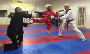 Family Taekwondo Center: $95 for $315 Groupon — Family Taekwondo Center