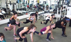 California Workout Studio: Up to 72% Off small group personal training  at California Workout Studio