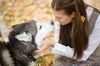 $19 for $35 Worth of Services — Camp David Dog Resort and Daycare