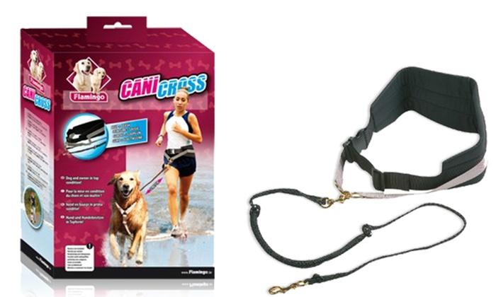 Accessoires de sport Karlie Flamingo pour chien | Groupon
