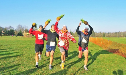 Registration for 2, 3, or 4 to the Winter Pineapple Classic from The Leukemia & Lymphoma Society (Up to 56% Off)