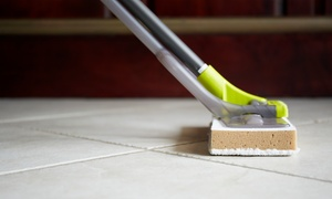 ROYAL REMEDIATION AND RESTORATION: $125 for $250 Groupon — Royal Remediation and Restoration, LLC