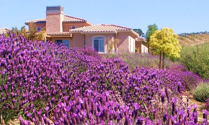 The Sundance Inn - Paso Robles, CA: Two-Night Stay for Two with Wine Tasting at The Sundance Inn in Paso Robles, CA