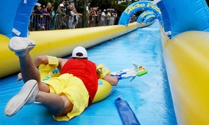 Slide Fest: One All-Day or Unlimited Slider Pass at Slide Fest (40% Off). Four Options Available.
