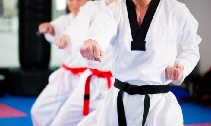 Busto's Martial Arts - Plainview: One Month of Unlimited MMA or Adult Karate Classes at Busto's Martial Arts (Up to 58% Off)