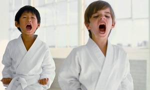 Hawaii Judo Academy: One Month of Beginner Judo Classes for Children or Adults at Hawaii Judo Academy (Up to 61% Off)