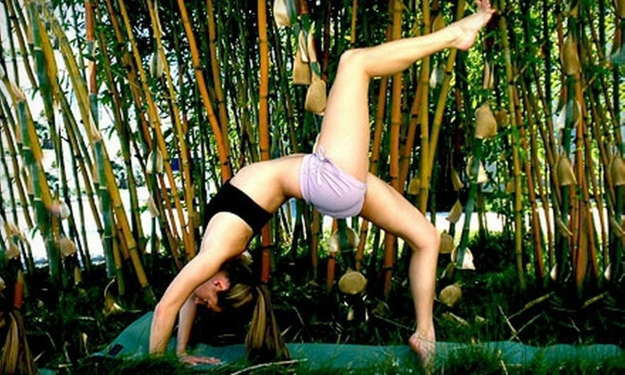 Sol Yoga Studios - UTC/La Jolla: 5 or 10 Yoga Classes or One Month of Unlimited Classes at Sol Yoga Studios in La Jolla (Up to 73% Off)