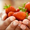 Up to 56% Off Visit to BerryFest
