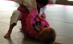 Alliance Jiu-jitsu / Alex Britto: $184 for $461 Groupon — Bajji