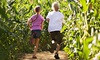 Kellers Farmstand Oswego - Oswego: Corn Maze and Fall Activities for Two, Four, or Six at Kellers Farmstand Oswego (Up to 53% Off)