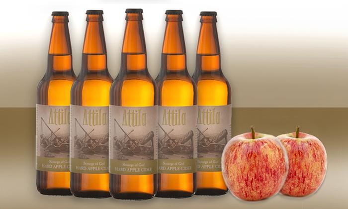 12-Pack of Attila Scourge of God Hard Apple Cider: 12-Pack of Attila Scourge of God Hard Apple Cider