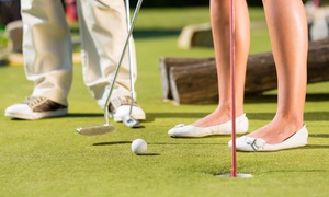 Lakeview Lanes: Four Rounds of Mini Golf at Lakeview Lanes Bowling Center (40% Off)