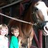 70% Off Horseback-Riding Lessons