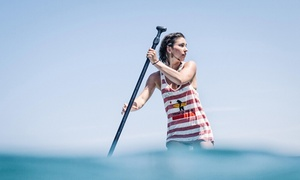 Standup Paddleboard Rental, 4-hour Soft-top Surfboard Rental, Or Both From Everyday California (up To 60% Off)