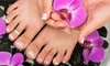 OLD OWNER Beautiful Nails - Multiple Locations: Classic Mani-Pedi with Option of Shellac or French Add-On at Beautiful Nails (Up to 48% Off)