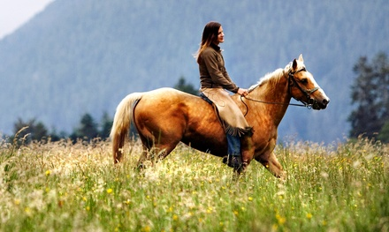 90-Minute Horseback Trail Ride for Two and Four at Rock Springs Run Trail Rides (48% Off)