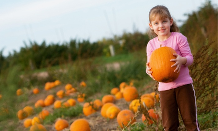 Susanna Farms - Lake Villa: $11 for Fall Farm Outing for Two, Including Admission and Two Small Pumpkins at Susanna Farms ($22 Value)
