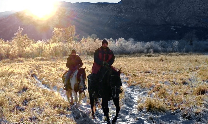 Alaska Horse Adventures LLC - Alaska Horse Adventures LLC: $290 for a Winter Trail Ride for Two from Alaska Horse Adventures, LLC ($474.84 Value)