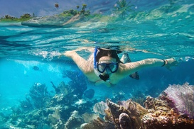 La Jolla Outpost: $10 for One Full-Day Snorkel Rental — La Jolla Outpost ($20 Value)