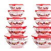 Glass Bowl and Lid Set (20-Piece)