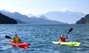 Harrison Eco Tours: 2-Hour Guided Kayak Tour for One, Two, or Four, or Private Tour for Up to Eight (Up to 63% Off)