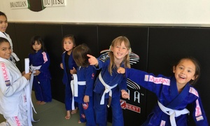 POWER OF LEVERAGE BRAZILIAN JIU JITSU: $24 for $69 Groupon — Power Of Leverage Brazilian Jiu Jitsu