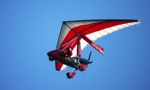 Delta Microlights: Delta Microlights: 30- or 60-Minute Trial Flight with Six-Month Membership (Up to 58% Off)