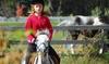 Four Views Equestrian Center - Tule Springs: Two Horseback-Riding Lessons at Four Views Equestrian Center (65% Off)