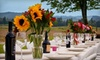 Bella Organic Pumpkin Patch - Sauvie Island: $150 for a Farm Tour and Farm-to-Table Dinner for Two at Bella Organic Farm ($300 Value). Three Options Available.