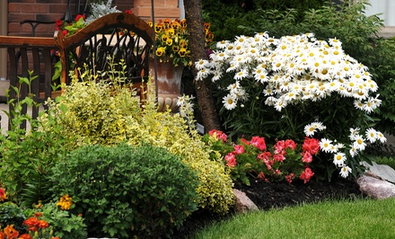 Three or Six Hours of Landscaping Services from A Grade Home Landscaping (Up to 64% Off)