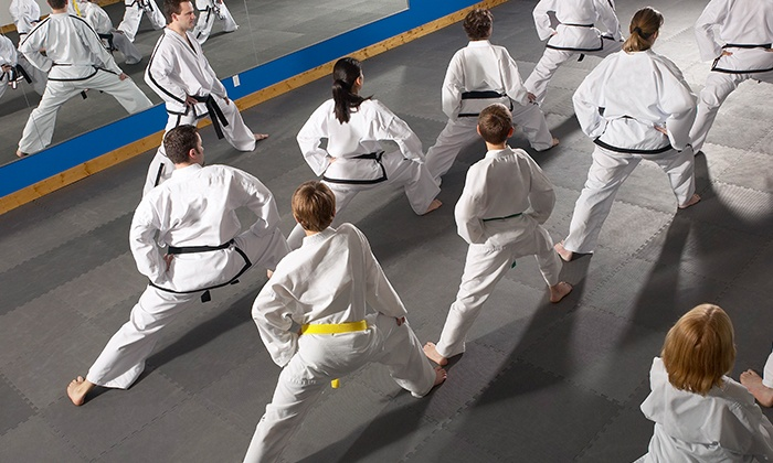 Traditional Karate Center (TKC Dojo) - Old Bridge: $9.99 for  Month of Unlimited Karate Classes at Traditional Karate Center (TKC Dojo) ($140 Value)